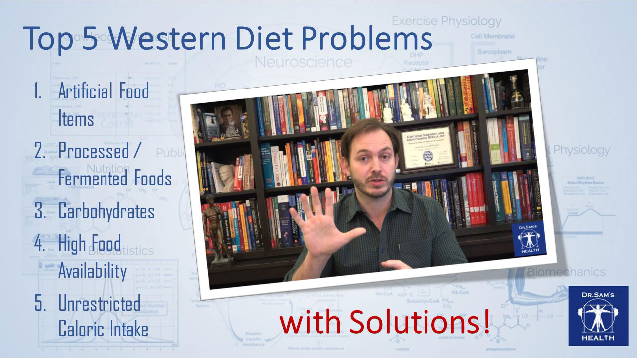 Troubleshooting the Western Diet: Top 5 Issues and Tentative Solutions