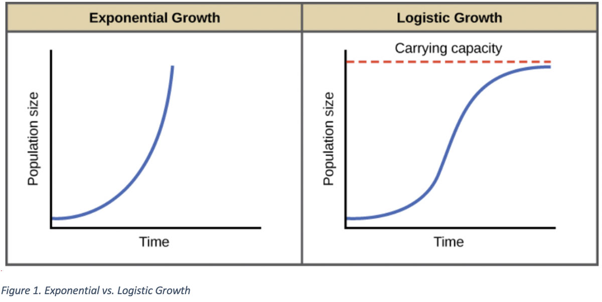 COVID-19: Flattening the Curve