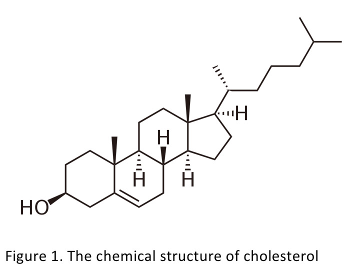 Figure 1. The chemical structure of cholesterol